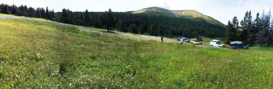 Visit Alpine Meadows…